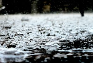 rain drops on grouns